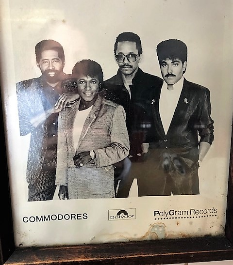 commodores picture